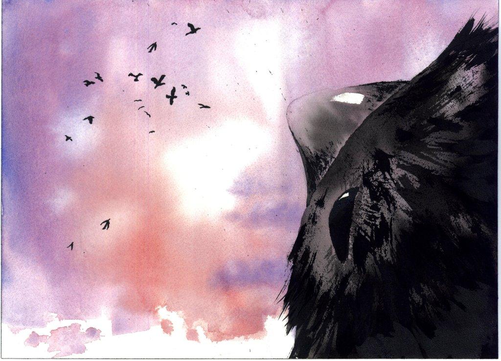 Il corvo Crok ha paura di volare